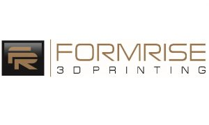 Logo Formrise